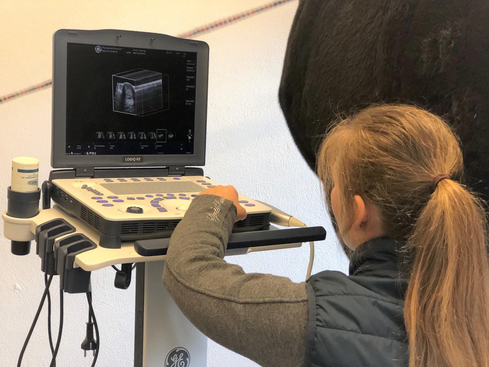 Neuheit: Ultraschalluntersuchung von Sehnen und Gelenken in 3D!